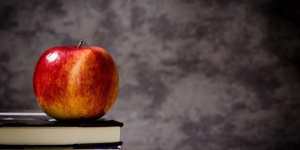 Word of the Week: Teacher