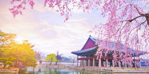 Go Beyond Gochujang: Appreciate Korean Language and Culture